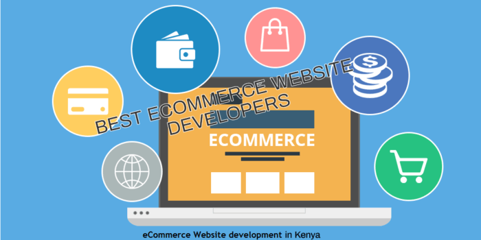 Best eCommerce Website Developers in Kenya